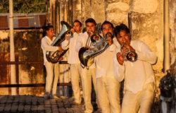 M5 Mexican Brass Band Deutschlandtour | buero doering